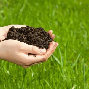 土壤环境、土壤利用和社会经济关系